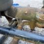 Ленивец (подъемный мост)